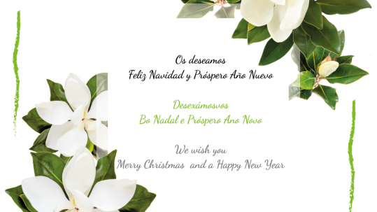 Río Tollo os desea Feliz Navidad y Próspero Año Nuevo!