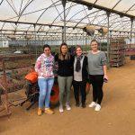 Recorremos el Algarve para conocer la realidad de los viveros del país vecino